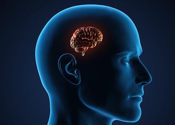 Bệnh teo não là bệnh lý gây nên bởi sự thoái hóa, chết và gián đoạn dẫn truyền giữa các tế bào thần kinh