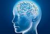 Những đối tượng nào có thể gặp tình trạng thiếu oxy não?