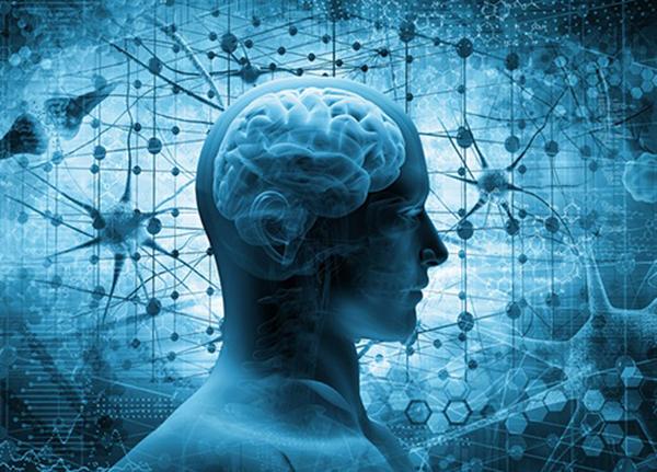 Vitamin và chất khoáng quan trọng nhất cho não