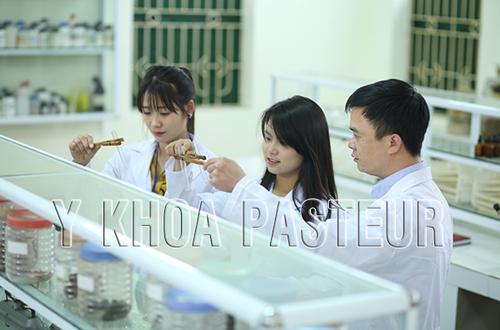 Sinh viên Y Khoa Pasteur thực hành hóa Dược